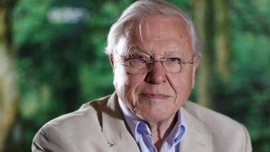 Attenborough: We're destroying things   Messenger for mother Earth   Scoop.it