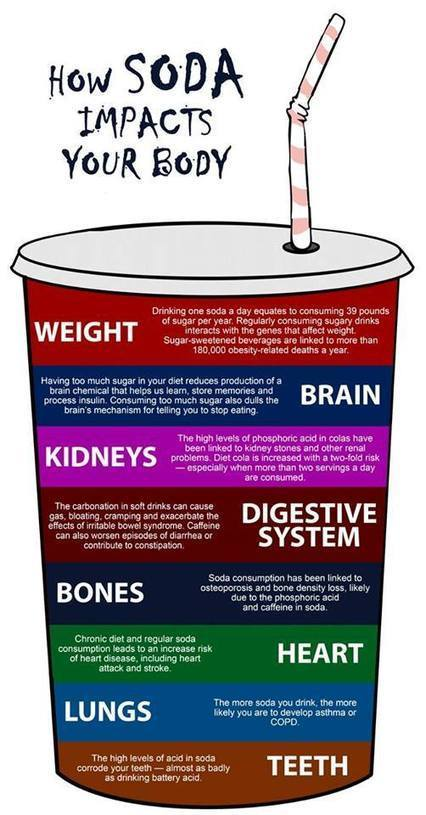 How Soda Impacts Your Body   Picturing It   Scoop.it