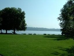 Suisse. L'association La Libellule lauréate du concours Nature en ville   Les colocs du jardin   Scoop.it