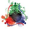 Reciclando Ecologicamente