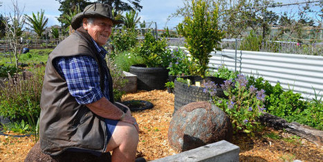 Gardening: Old skills make a comeback - Life & Style - NZ Herald News   edible landscaping   Scoop.it