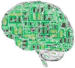 Ten Brain Science Studies from 2011 Worth Talking About | I want your brains | Scoop.it