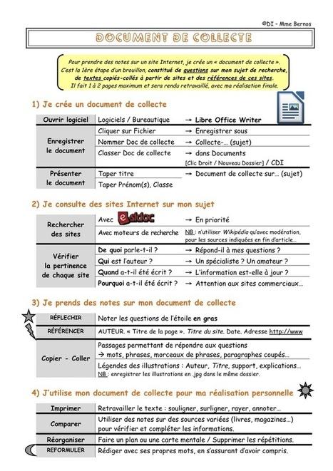 Le document de collecte - Le Bateau Livre   Le document de collecte   Scoop.it
