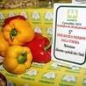 Food Safety - Controllo degli Alimenti