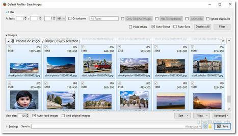 Pick & Save Images permet de récolter toutes les images contenues sur une page internet | Chroniques libelluliennes | Scoop.it