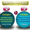 Nutrite Hair Transplant