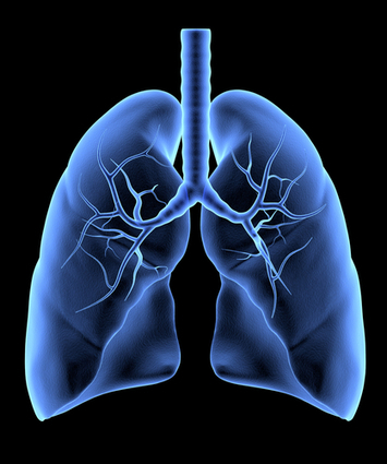 Nanoparticles Used to Breach Mucus Barrier in Lungs | Medical Engineering = MEDINEERING | Scoop.it