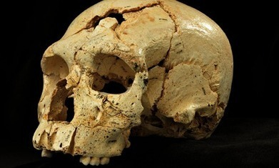 Fossil finds in Spain point to a far more complicated Neanderthal family tree | Geology | Scoop.it