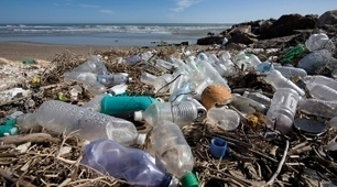 Bottles, bags, ropes and toothbrushes: the struggle to track ocean plastics   Papers   Scoop.it