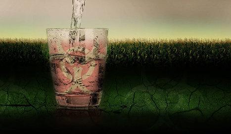 El grave efecto de la agricultura agroquímica sobre las aguas subterráneas - Ecoportal.net | Agroindustria Sostenible | Scoop.it