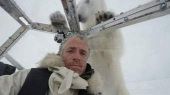Un caméraman attaqué par un ours polaire (vidéo) | Voyages en terres polaires | Scoop.it