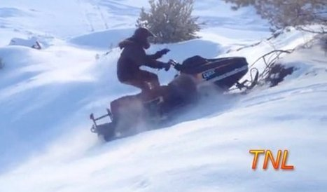 Fail Compilation January 2014 by TNL (Video) - Daily Picks and Flicks | Fail | Scoop.it