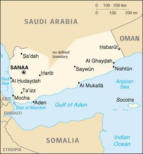 Focus on #US Troops in #Yemen Masks Saudi Spy Ops | From Tahrir Square | Scoop.it