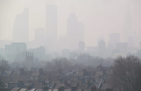 Air pollution now major contributor to stroke, global study finds | The Glory of the Garden | Scoop.it