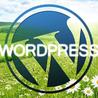 Web Design, CSS, HTML