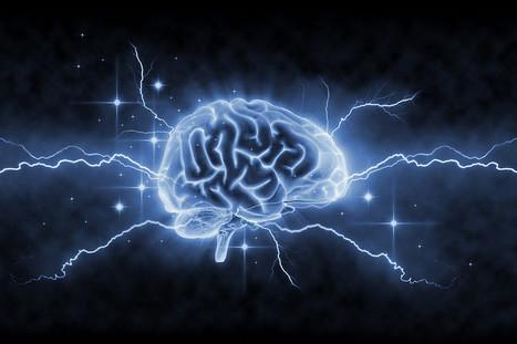 Our Amazingly Plastic Brains | Contemporary fiction | Scoop.it