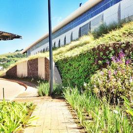 Landscape Design: Gardening On A Vertical | Wellington Aquaponics | Scoop.it