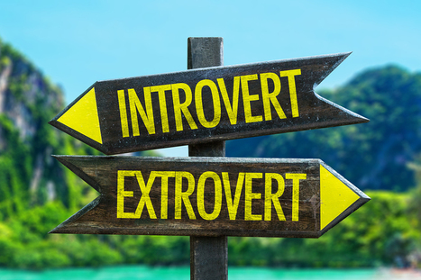 Introvert Versus Extrovert Careers | Thinking Clearly and Analytically | Scoop.it