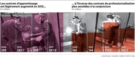 France Emploi: les formations en alternance ont résisté à la crise en 2012 | L'oeil de Lynx RH | Scoop.it