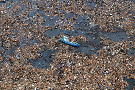 The ocean is not broken, but consumer behaviour is   Ocean News   Scoop.it