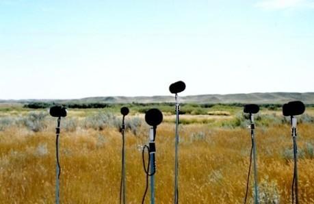 Wildurban A Multichannel Soundscape Installation | Visit Calgary | DESARTSONNANTS - CRÉATION SONORE ET ENVIRONNEMENT - ENVIRONMENTAL SOUND ART - PAYSAGES ET ECOLOGIE SONORE | Scoop.it