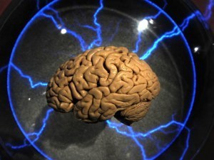 Scientists Successfully 'Hack' Brain To Obtain Private Data - CBS Seattle | MyCinema | Scoop.it