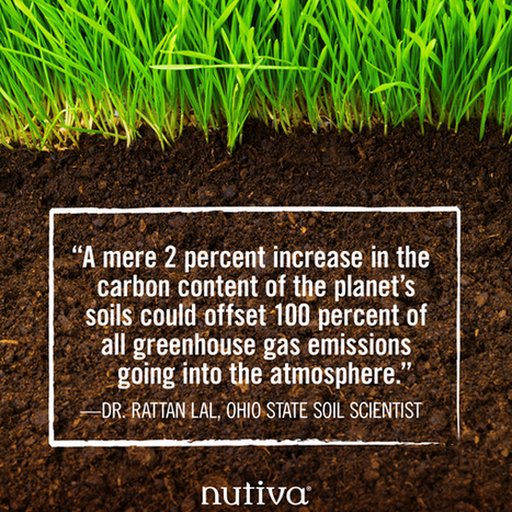 The Solution Under Our Feet: How Regenerative Organic Agriculture Can Save the Planet » EcoWatch | SMART INNOVATIONS | Scoop.it