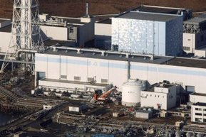 Fukushima rice passes radiation tests | DESTROYING OUR HEALTH | Scoop.it