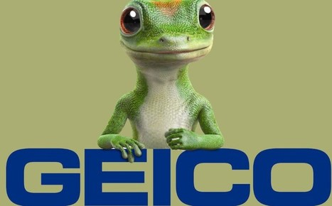 Geico Car Insurance Reviews >> Claim In Usa Insurance Scoop It