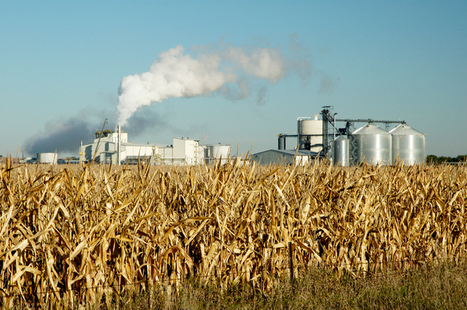 Scrapping corn ethanol subsidies for a smarter biofuels policy | biorenewable energy | Scoop.it