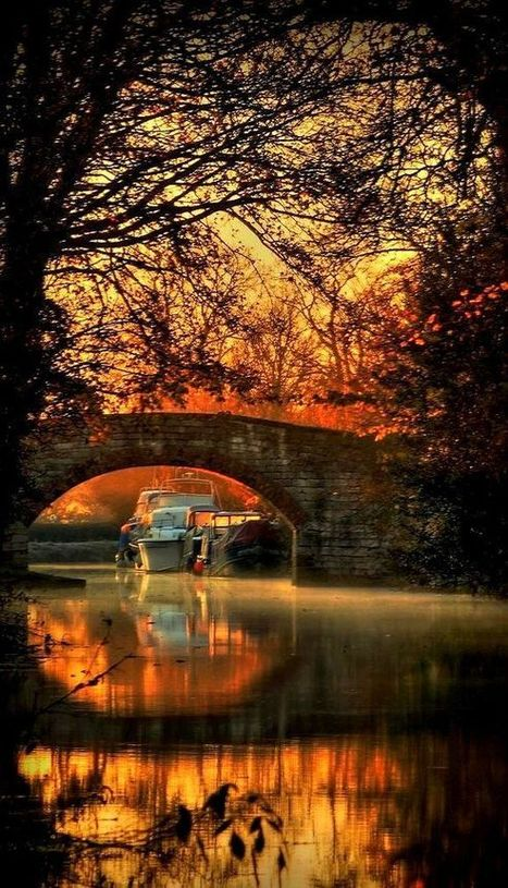 30+ Mystical Bridges That Will Take You To Another World | profile | Scoop.it