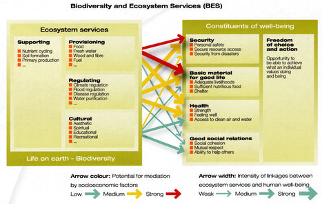 Managing community ecosystem services - Cultural Ecology | Research Interests | Scoop.it