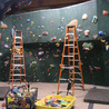 Climbing Gym Management