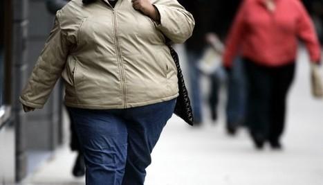 SIAL. La lutte contre l'obésité passe aussi par l'innovation... marketing | Actualité de l'Industrie Agroalimentaire | agro-media.fr | Scoop.it