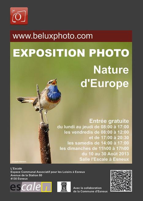 Exposition photos Nature à Esneux (B) en Août 2013 - Forum photo ... | Esneux | Scoop.it