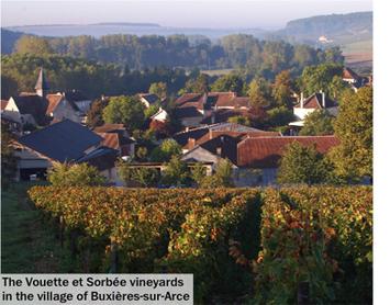 Wine&Spirits Magazine - Raising the Côte des Bar | Côte des Bar champagne | Scoop.it