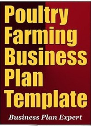 Poultry farming business plan in nigeria samp poultry farming business plan in nigeria sample template wajeb Choice Image