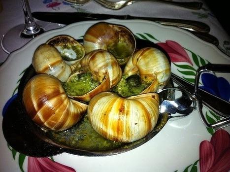 Recette d'escargots en persillade à la bourguignonne, en coquille | Recettes de cuisine maison | Scoop.it