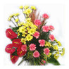NCR Flowers - Delivering flowers, cakes, chocolates