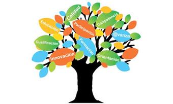 IBERCIENCIA acompaña el cambiode paradigma: la enseñanza centrada en el alumno   Enseñar y aprender en nivel Primaria   Scoop.it