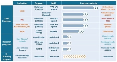 NASH Drugs: A Comprehensive Review Of Current Clinical Trials | Hepatitis C New Drugs Review | Scoop.it
