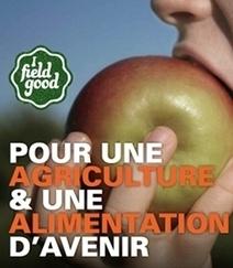 Pierre Rabhi : Vers la sobriété heureuse - [CDURABLE.info l'essentiel du développement durable]   Mediapeps   Scoop.it