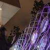 Transformation numérique  et la ville intelligente