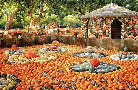 America's Best Pumpkin Festivals | The Miracle of Fall | Scoop.it
