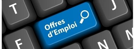 Étude Maesina International sur les rémunérations : des augmentations dans le digital et le CRM - RH: profils et salaires sur le Web | E-LEARNING & E-recrutement | Scoop.it