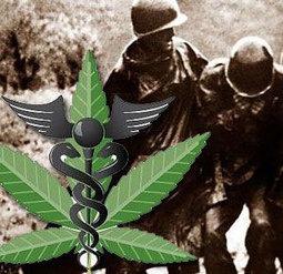 New Mexico: Medical Marijuana Access For PTSD Patients Is Protected | Hemp News | Liberal Politics | Scoop.it