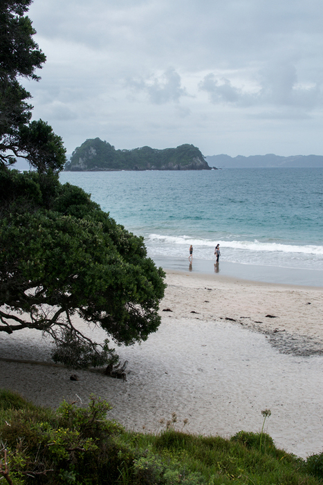New Zealand Tip: Coromandel Peninsula · Happy Interior Blog | Interior Design & Decoration | Scoop.it