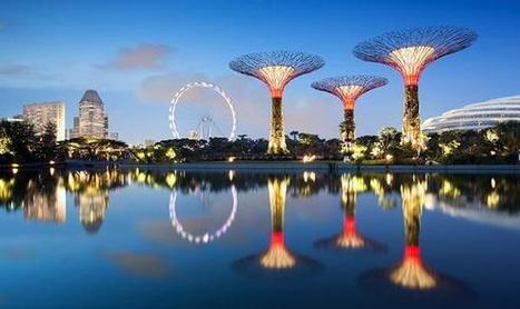 Singapore To Unveil The World's First Mechanical Forest Later This Month | HCPV | Scoop.it