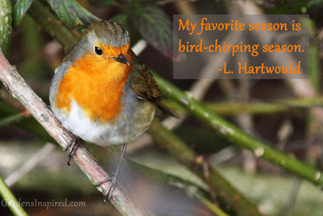 Quote by L. Hartwould | The Muse | Scoop.it
