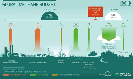 Methane : Les vaches inquiètent les climatologues | Toxique, soyons vigilant ! | Scoop.it